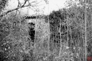 Abandon 8 – Neglect 8 (c) A.Chatain