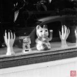 Qui se rappelle des monstres? 5 (c) A.Chatain